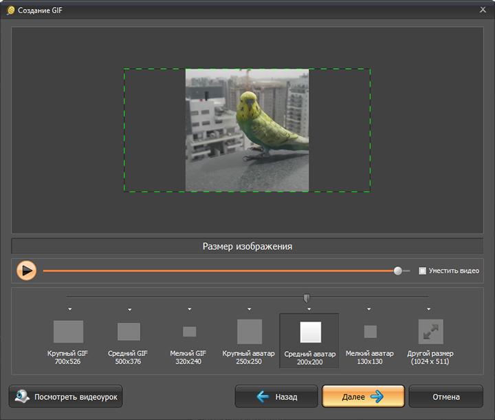 Своими, программа для создания гиф анимации из фото